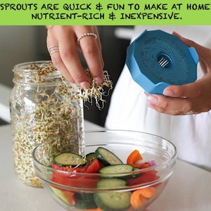 Sprouting Seeds Mason Lid 2 pieces set