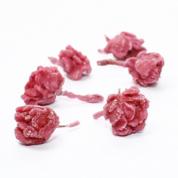 Candied Rose Edible Flower