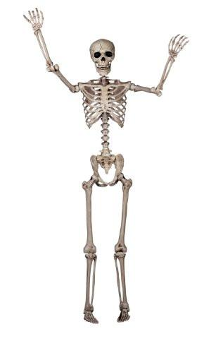 Lifesize Crazy Bonez Pose-N-Stay Skeleton