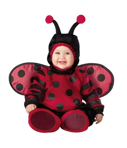Cute Adorable Baby Lady Bug Costume