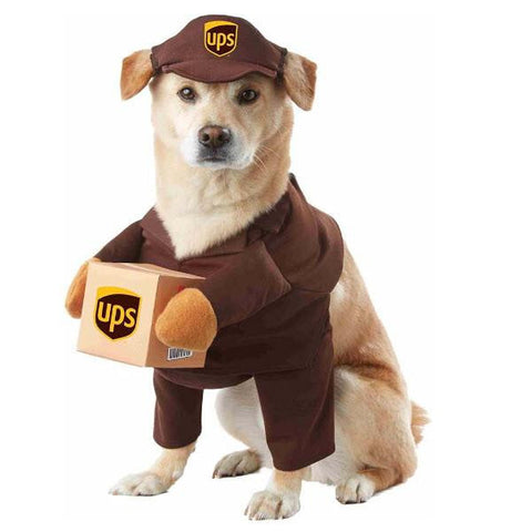 Dog UPS Pal Pet Costume