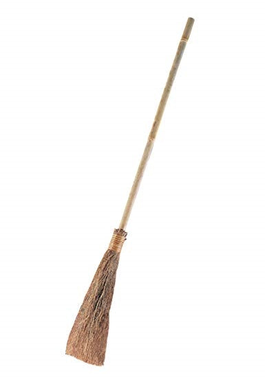 Wicked Witch Broom Stick