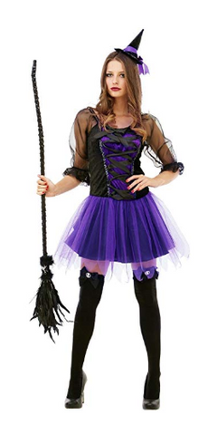 Wicked Witch Sorceress Womens Costume