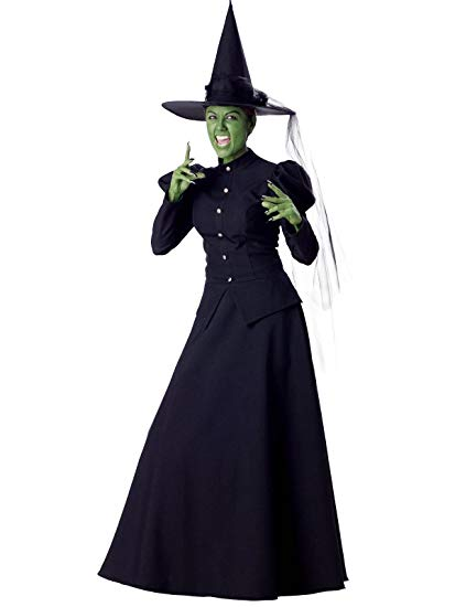 Wicked Witch Wizard of Oz Womens Costume