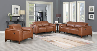 WEEKLY or MONTHLY. Bergman Genuine Leather Double POWER Sofa and Loveseat