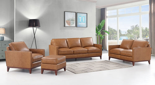 WEEKLY or MONTHLY.  New Port Leather Couch Set