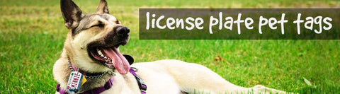License Plate Pet Tags