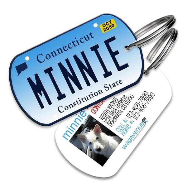 Connecticut License Plate Pet Tag - WagAvenue - 1