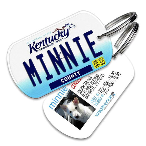 Kentucky License Plate Pet Tag - WagAvenue - 1