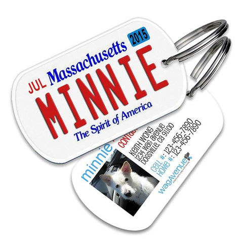 Massachusetts License Plate Pet Tag - WagAvenue - 1
