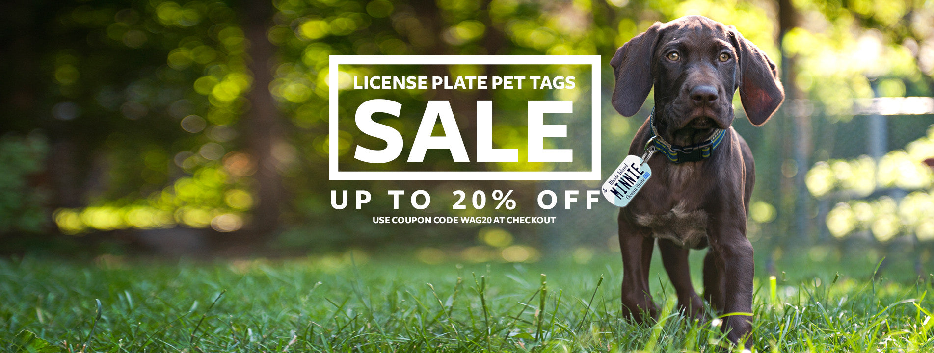 License Plate Pet Tags for Dogs and Cats