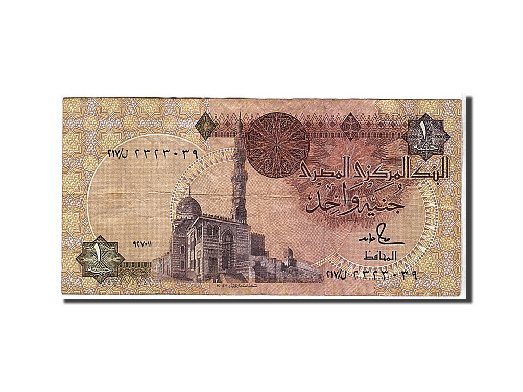 Egypt, 1 Pound, 1992, KM #50d, VF(30-35)
