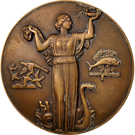 FRANCE, Business & industry, French Fourth Republic, Medal, AU(50-53), Bronze,..