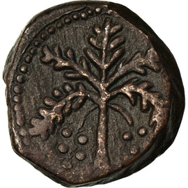 Coin, Italy, SICILY, William II, Follaro, 1166-1189, Messina, AU(50-53), Bronze