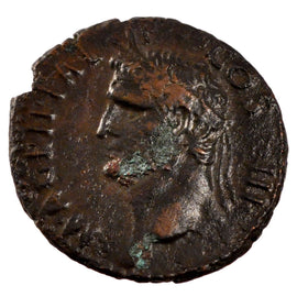 Agrippa, As, Roma, AU(55-58), Copper, Cohen #3, 10.90