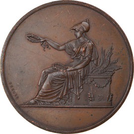 France, Medal, Ville de Paris, Enseignement du Dessin, Arts & Culture, 1878