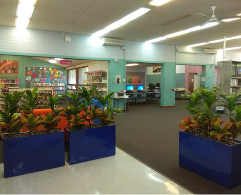 Balga Senior High School - Artificial Plants and Planter Boxes