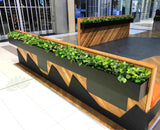 Caffissimo Cafe Rockingham - Small Greenery for Built-in Planters