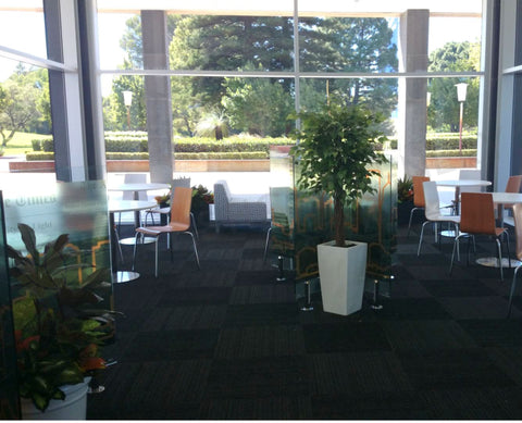 Cafe Dumas (Perth Parliament House) - Artificial Plants in Pots & Planter Boxes