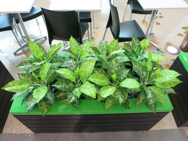 Artificial Plants For Cafe Inside Shopping Center Ellenbrook Wa Artistic Greenery