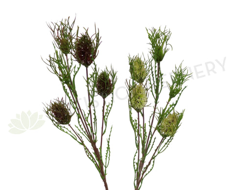 F-ASB-B05 Mini Banksia 69cm Green / Red