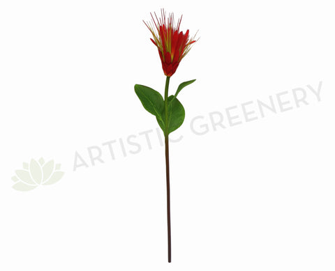 F-RT-5201RD Star Protea Red 60cm