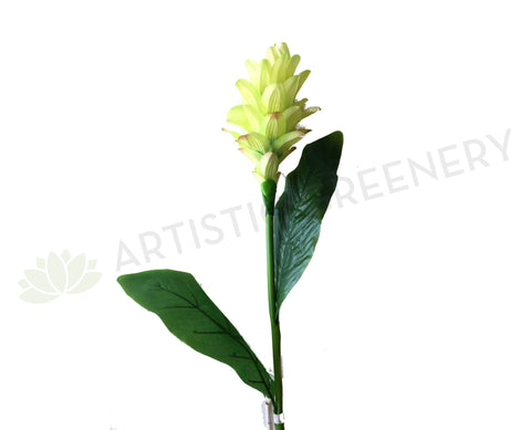 Clearance Stock - Ginger Flower 72cm Light Green