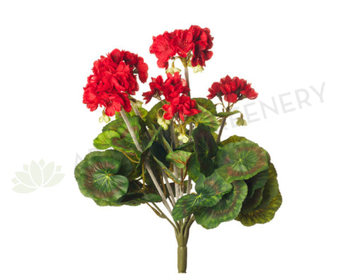 F-RT-5391RD Geranium Bush 36cm Red