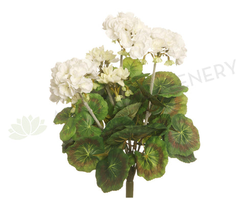 F-RT-5391WH Geranium Bush 36cm White