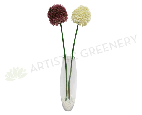 F0040 Allium Single Stem Purple / White 2 sizes