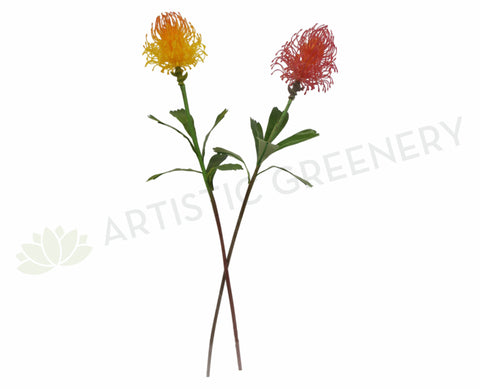 F0067N Protea Pincushion 70cm Orange / Red