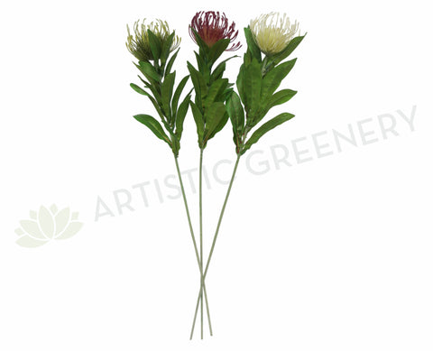 Protea Pincushion Single Stem