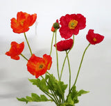 F0111 Poppy 4 heads (red or orange) 60cm zoom
