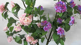 F0124 Hydrangea Branch with Leaves 144cm Pink / Purple zoom