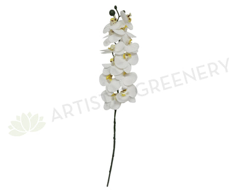 F0151 Small Phalaenopsis Orchid Spray Real Touch 57cm White