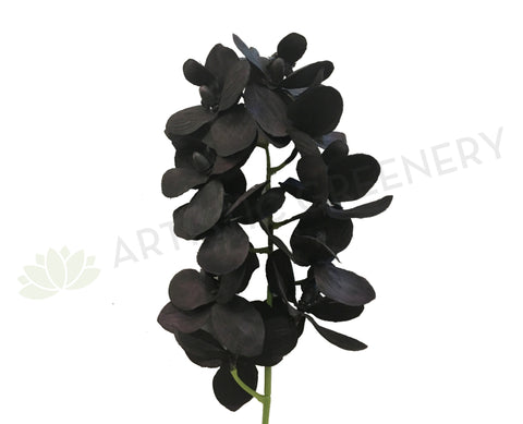 F0159 Black (Dark Purple) Orchid Spray Silk 64cm