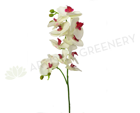 F0178 Phalaenopsis Orchid Spray Real Touch 85cm White