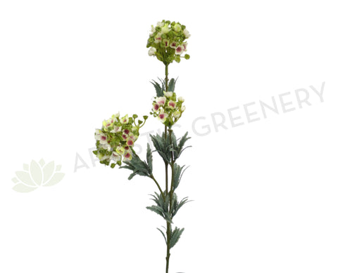 F0180 Wax Flower Cluster 77cm White & Light Green