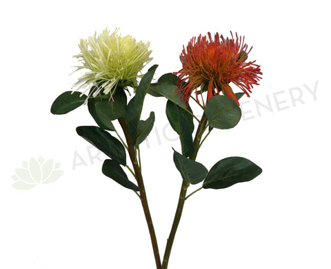 F0181 Pincushion Protea Large 70cm (17cm diameter) Red / White / Orange
