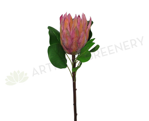 F0183 King Protea Single Stem 68cm Mauve