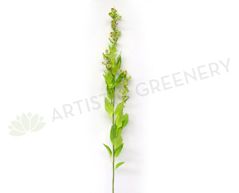 F0186 Flowering Sage Spray 90cm Lime Green