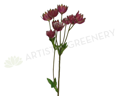 F0193 Astrantia Spray 54cm Plum