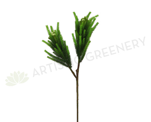 F0203 Safari Pine Pick with Seeds / Brunia 80cm Green