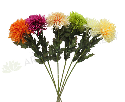 F0215 Chrysanthemum Large Disbud Single Stem 80cm 6 Colours