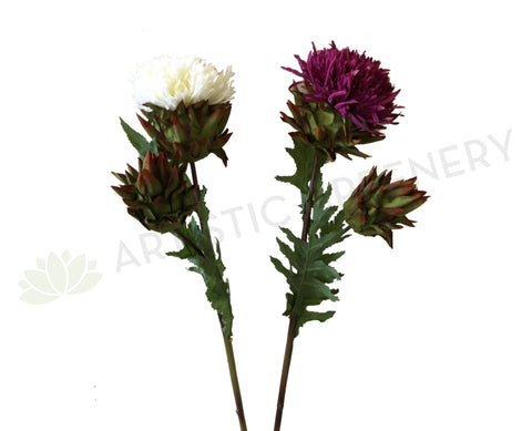 F0219L Chrysanthemum (Double) 52cm Maroon / White
