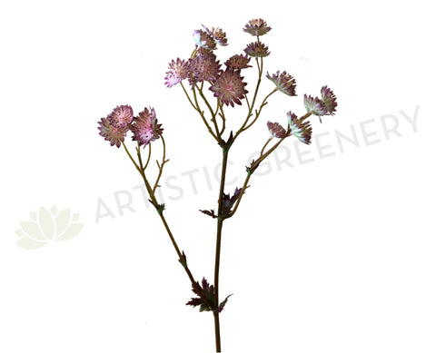 F0225 Astrantia Spray 61cm Pink