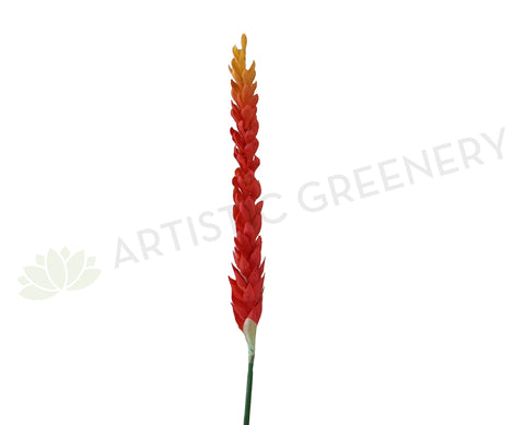 Clearance Stock - F0291 Exotic Ginger Flower 91cm