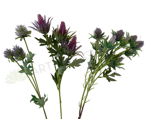 F0292 F0294 F0295 Eryngium Thistles / Sea Holly 61-68cm Purple