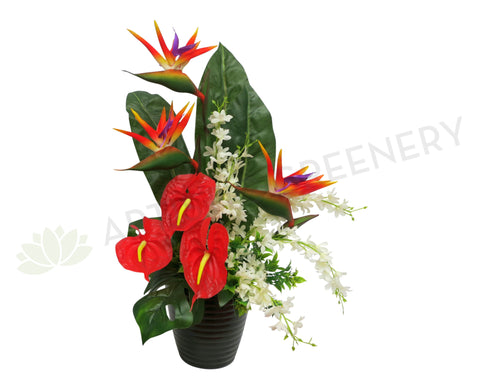 FA1005 - Bird of Paradise & Anthurium Arrangement