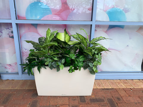 For Hire - Artificial Greenery / Hedge in Planter Box  (Code: HI0012)
